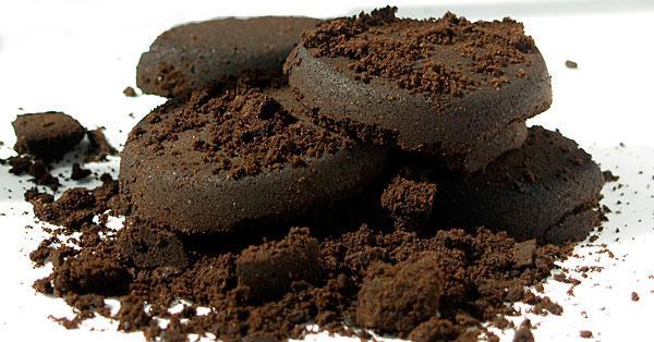 borra de café adubo poderoso